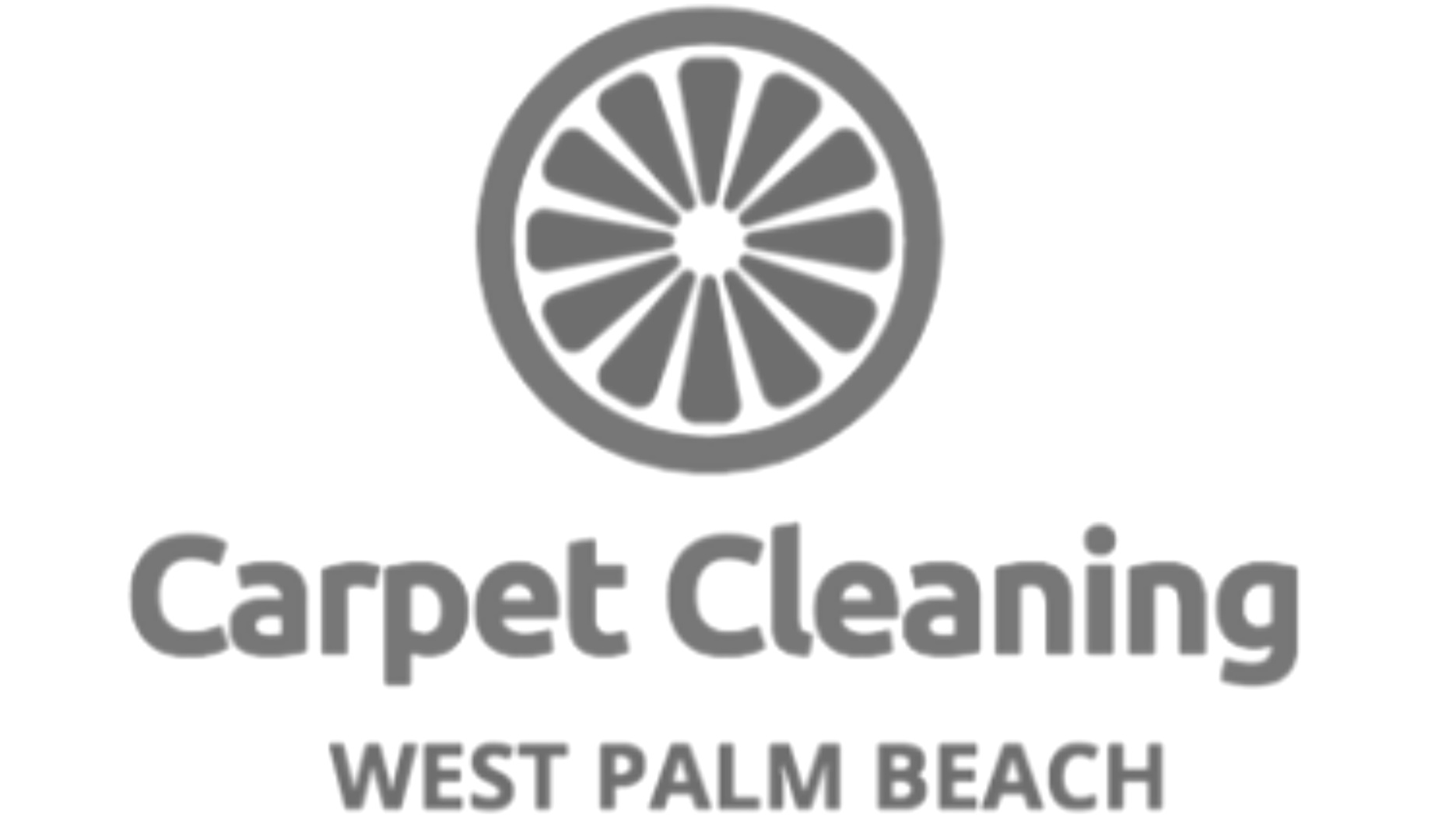 carpet cleaning website design seo west palm beach